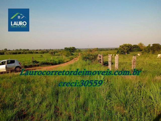 Fazenda com 28.500 ha. na Região de Araguaína TO - Foto 13