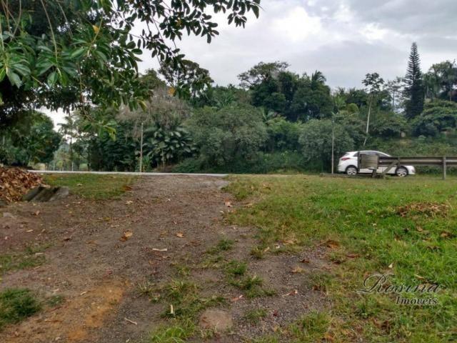 Chacrinha com frente para a Br 277 - Morretes Paraná - Foto 13