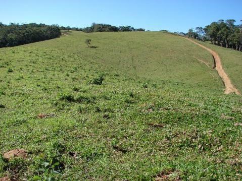Sorocaba Região Fazenda 200 Alqueires - Foto 15