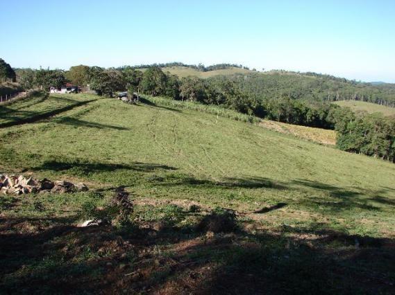Sorocaba Região Fazenda 200 Alqueires - Foto 9
