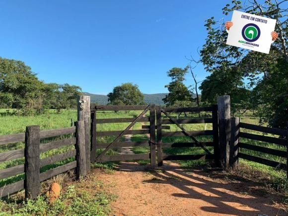 Fazenda região de rosário oeste - Foto 2