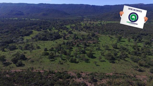 Fazenda região de rosário oeste - Foto 20