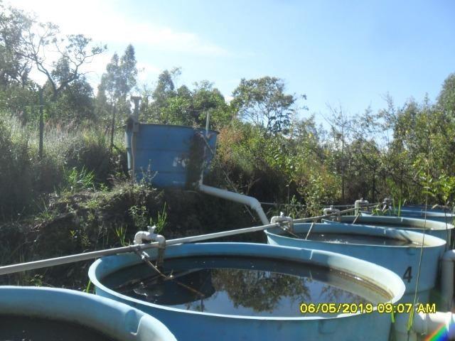225B/ Maravilhosa fazenda de 235 ha com lindas cachoeiras em Ouro Preto a 76 km de BH - Foto 12