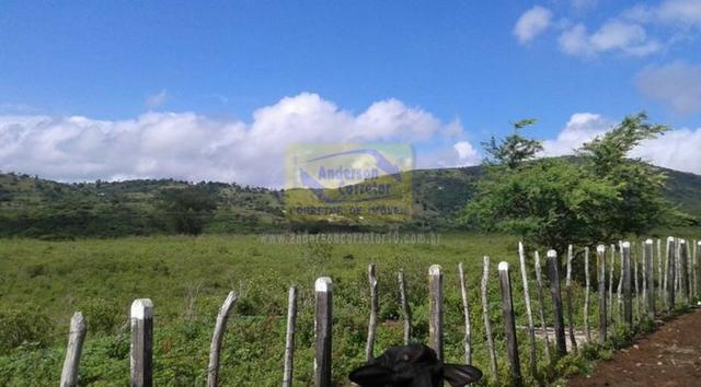 Excelente Área Plana De 40,5 Hectares - Gravatá/PE / Propriedade ID : A0261 - Foto 15