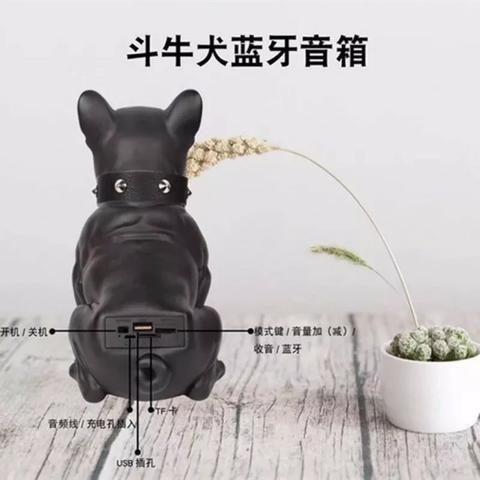 Caixa De Som Amplificada Modelo Cachorro Bulldog Bluetooth - Foto 5