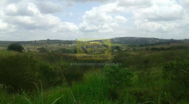 Excelente Área Plana De 40,5 Hectares - Gravatá/PE / Propriedade ID : A0261 - Foto 4