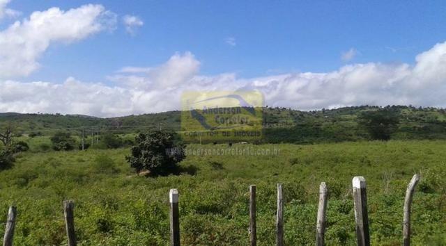 Excelente Área Plana De 40,5 Hectares - Gravatá/PE / Propriedade ID : A0261 - Foto 11