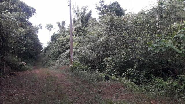 Terreno na estrada de Manacapuru 10 mil - Foto 2