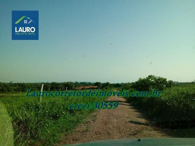 Fazenda com 28.500 ha. na Região de Araguaína TO - Foto 11