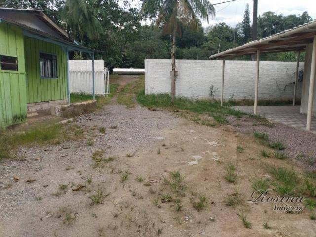 Chacrinha com frente para a Br 277 - Morretes Paraná - Foto 6
