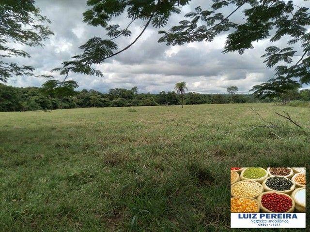 FAZENDA À VENDA EM RIO NEGRO - MS - DE 1.065 HECTARES (Pecuária) - Foto 3
