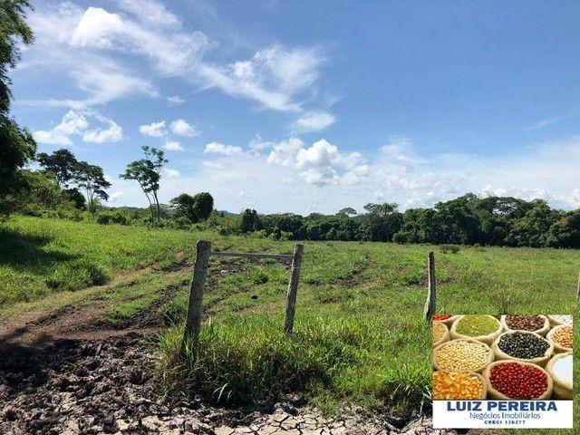 FAZENDA À VENDA EM RIO NEGRO - MS - DE 1.065 HECTARES (Pecuária) - Foto 5
