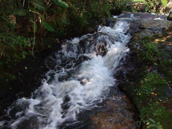 Sorocaba Região Fazenda 200 Alqueires - Foto 20
