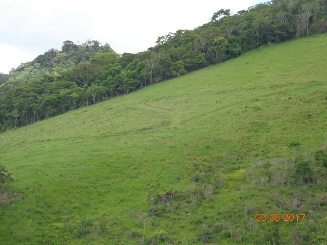 Fazenda em Travessão - Foto 2