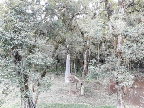 Chácara à venda em Picassinho, Piên cod:136674 - Foto 4