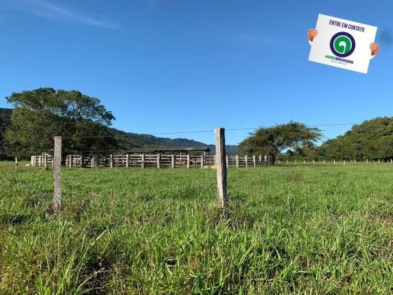 Fazenda região de rosário oeste - Foto 3