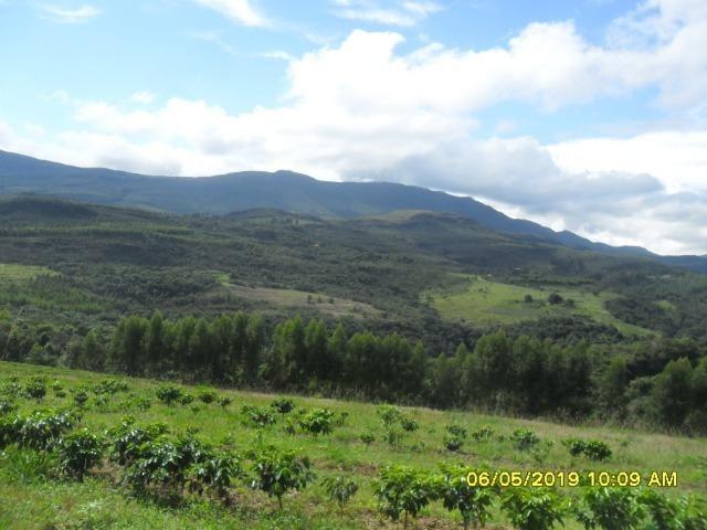 225B/ Maravilhosa fazenda de 235 ha com lindas cachoeiras em Ouro Preto a 76 km de BH - Foto 10