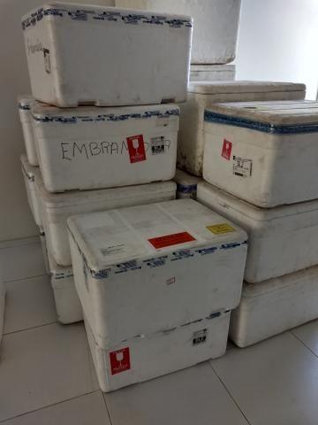 Caixas de Isopor 100/120 lts R$: 15,00 - Foto 2