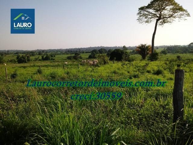 Fazenda com 28.500 ha. na Região de Araguaína TO - Foto 4