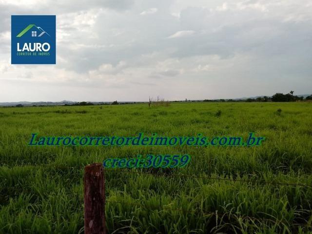Fazenda com 28.500 ha. na Região de Araguaína TO - Foto 12