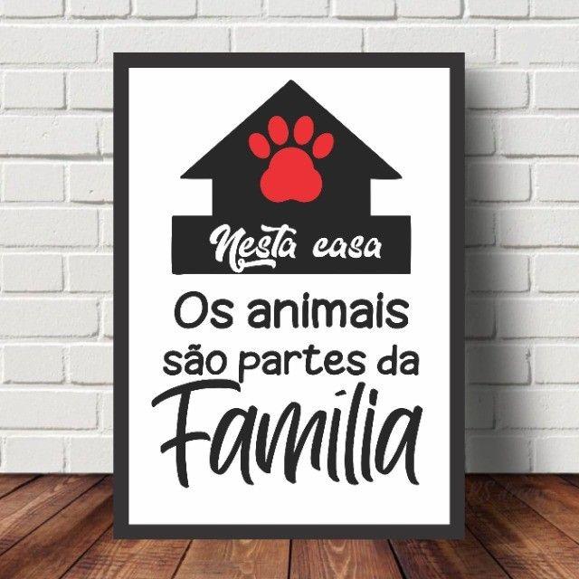 ***Leia*** Quadros Decorativos Personalizados Frases Pets - Foto 3