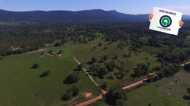 Fazenda região de rosário oeste - Foto 16