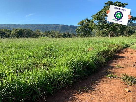 Fazenda região de rosário oeste - Foto 13