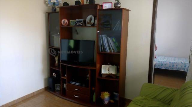 Casa à venda com 3 dormitórios em Pindorama, Belo horizonte cod:569036 - Foto 5