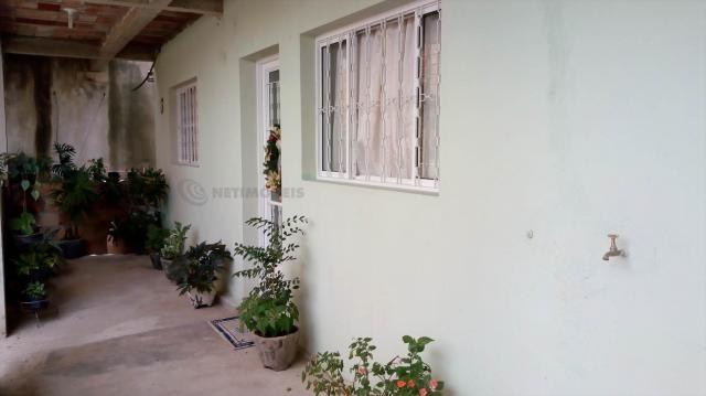 Casa à venda com 3 dormitórios em Pindorama, Belo horizonte cod:569036 - Foto 19