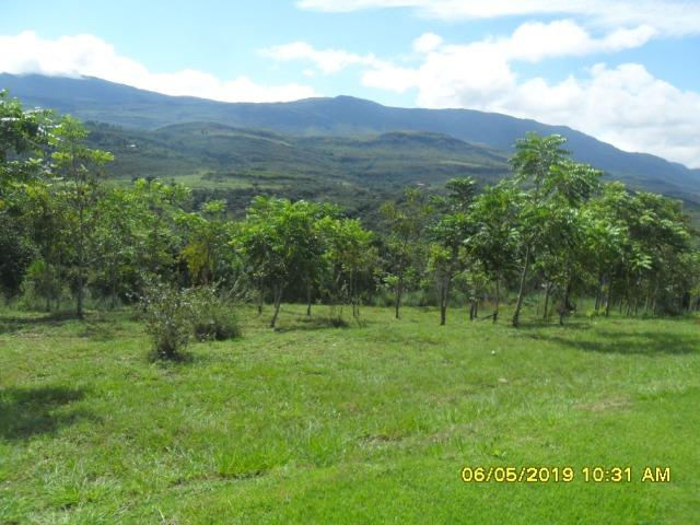 225B/ Maravilhosa fazenda de 235 ha com lindas cachoeiras em Ouro Preto a 76 km de BH - Foto 14