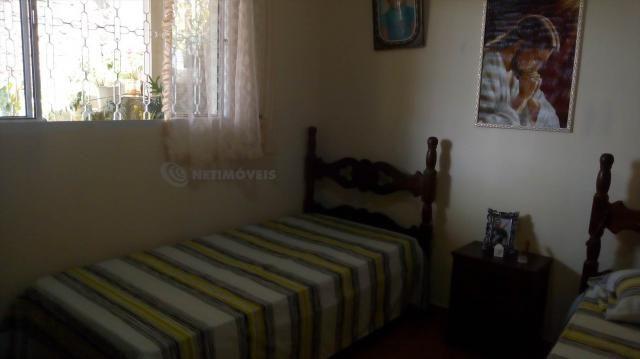 Casa à venda com 3 dormitórios em Pindorama, Belo horizonte cod:569036 - Foto 8