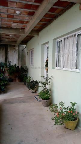 Casa à venda com 3 dormitórios em Pindorama, Belo horizonte cod:569036 - Foto 2