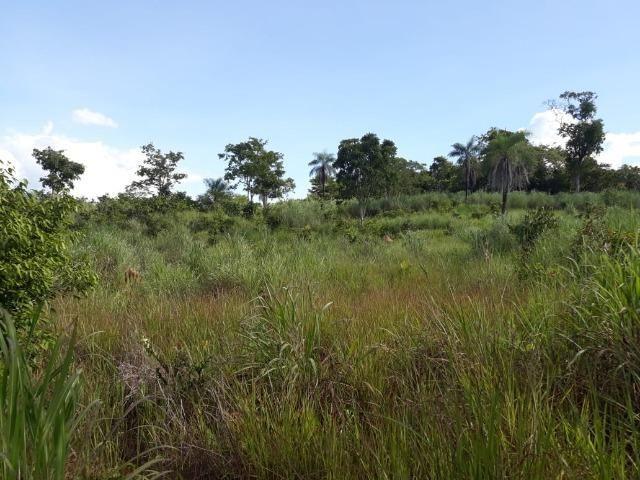 Sitio região lago do manso - Foto 8