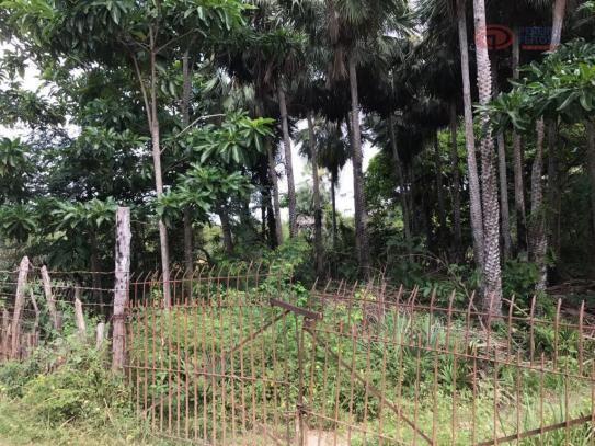 Terreno rural à venda, zona rural, barreirinhas - te0144.