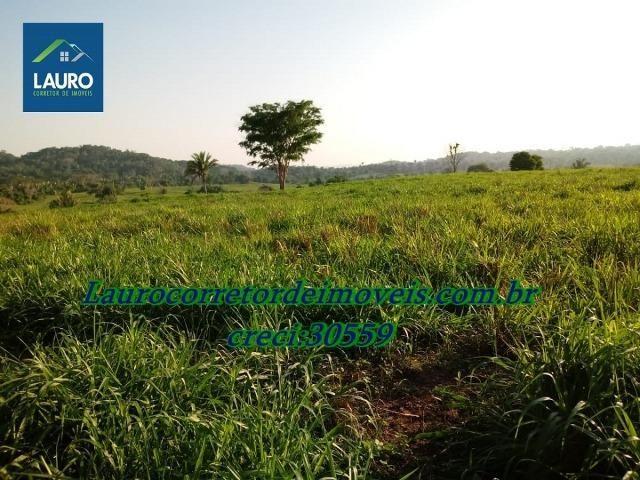 Fazenda com 28.500 ha. na Região de Araguaína TO - Foto 10