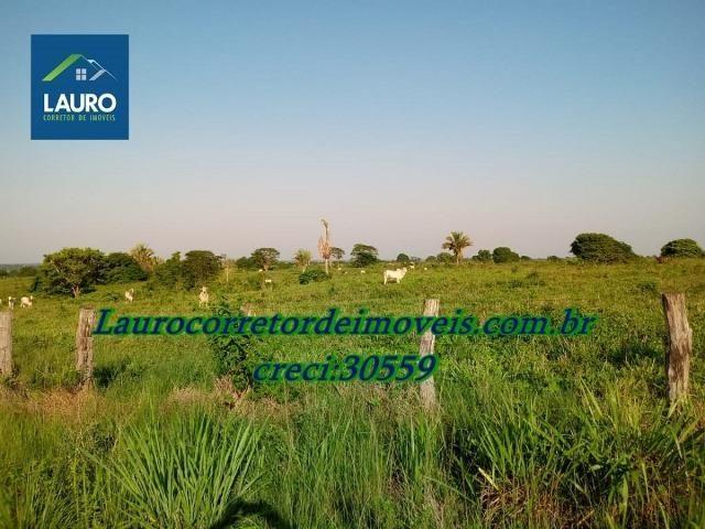Fazenda com 28.500 ha. na Região de Araguaína TO - Foto 5