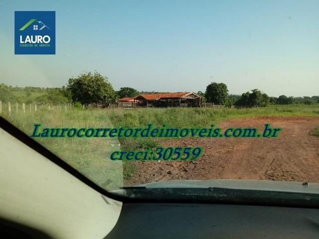 Fazenda com 28.500 ha. na Região de Araguaína TO - Foto 6