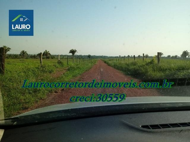 Fazenda com 28.500 ha. na Região de Araguaína TO - Foto 7