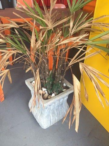 Vazo decorativo