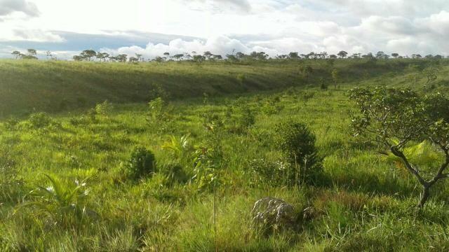 Terreno Rural medindo 50 Hc