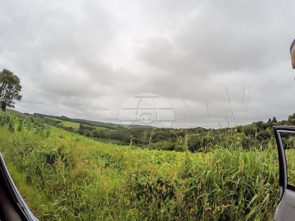 Chácara à venda em Picassinho, Piên cod:136674 - Foto 14