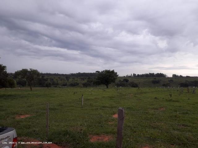 Chácara para venda em martinópolis, km 5 - Foto 8