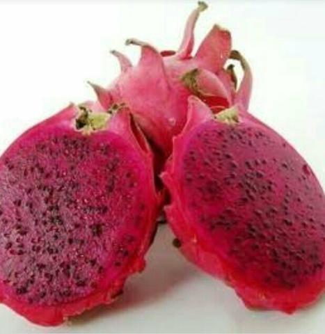 Pitaya de polpa vermelha - Foto 2