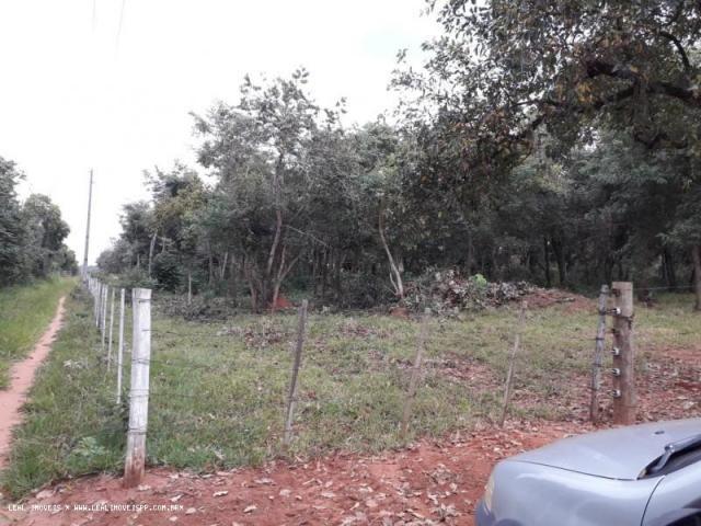 Chácara para venda em martinópolis, km 5 - Foto 6