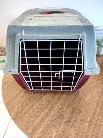 Caixa de transporte de cães n2