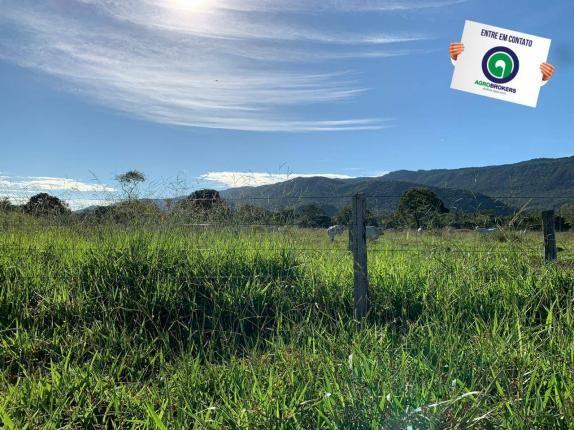 Fazenda região de rosário oeste - Foto 7