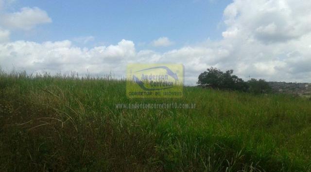 Excelente Área Plana De 40,5 Hectares - Gravatá/PE / Propriedade ID : A0261 - Foto 5
