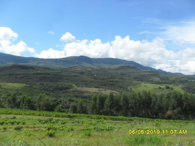 225B/ Maravilhosa fazenda de 235 ha com lindas cachoeiras em Ouro Preto a 76 km de BH - Foto 20