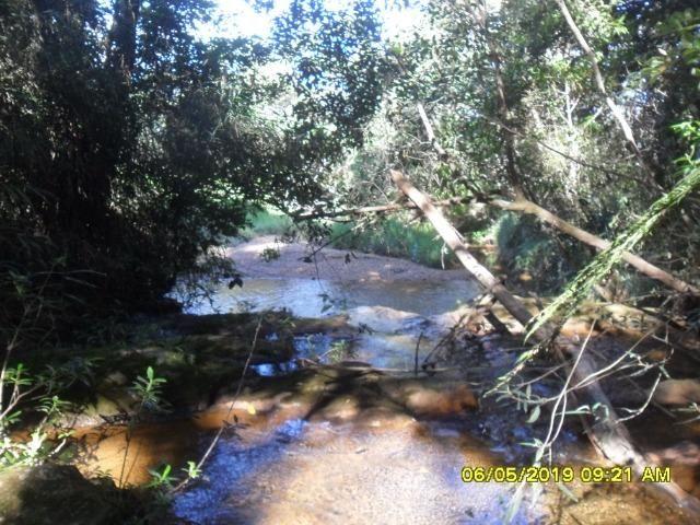 225B/ Maravilhosa fazenda de 235 ha com lindas cachoeiras em Ouro Preto a 76 km de BH - Foto 6