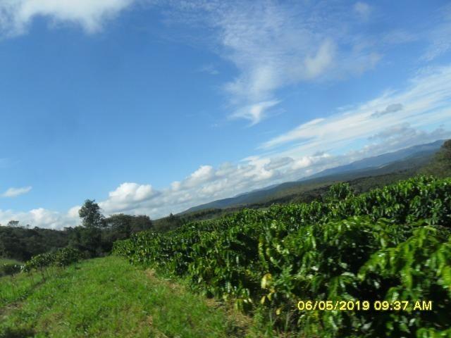 225B/ Maravilhosa fazenda de 235 ha com lindas cachoeiras em Ouro Preto a 76 km de BH - Foto 13